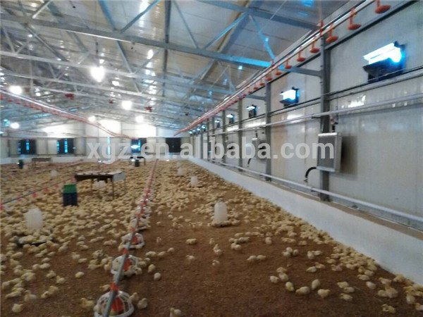 pre fabricated automatic poultry farm structure