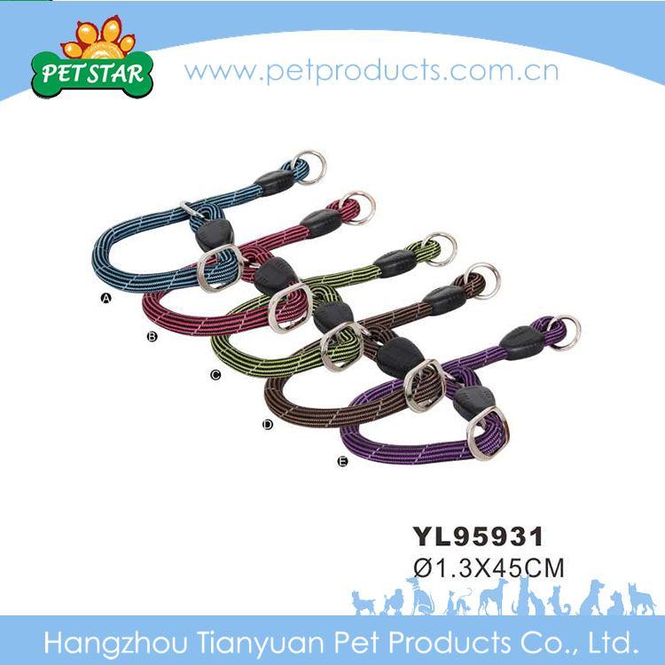 Eco-Friendly Hot Selling Nylon Dog Leash Slip Collar