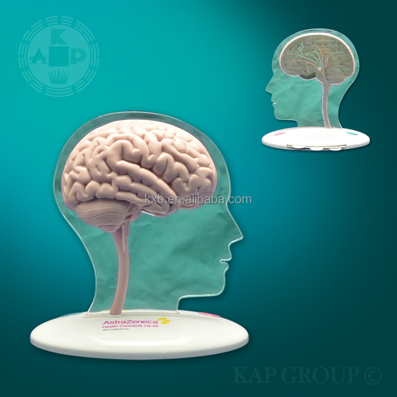 High Quality Silicone Medical Fake Human Brain Model Artificial 3d