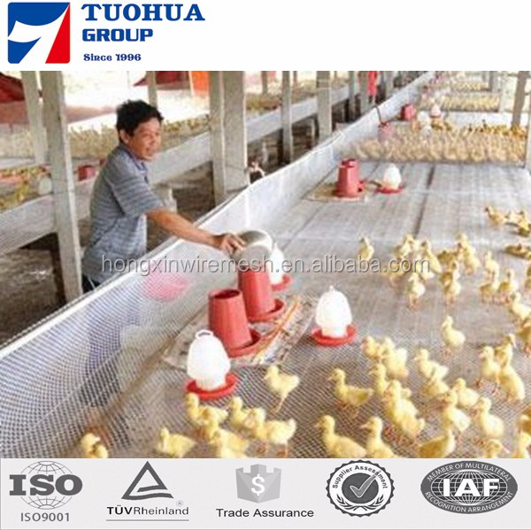 20 years manufacture Plastic Flat Netting for chicken duck fish Virgin HDPE/PP/PE various color