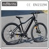 MOTORLIFE/ e bike pedelec 250w mountain e bike, big power Electric Motorcycle