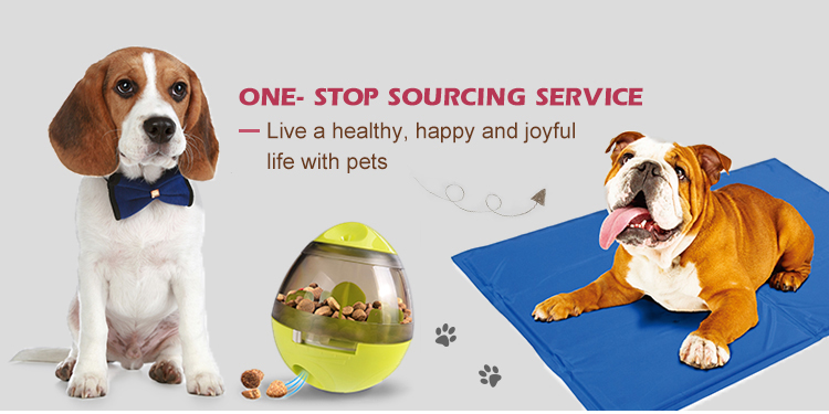 Hot Selling Cheap Custom Private Label Dog Chew Toys Food Toy Ball Interactive Dog Toys