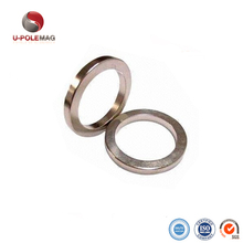 Customized Strong Rare Earth Neodymium Radial Magnetized Big Ring Magnet