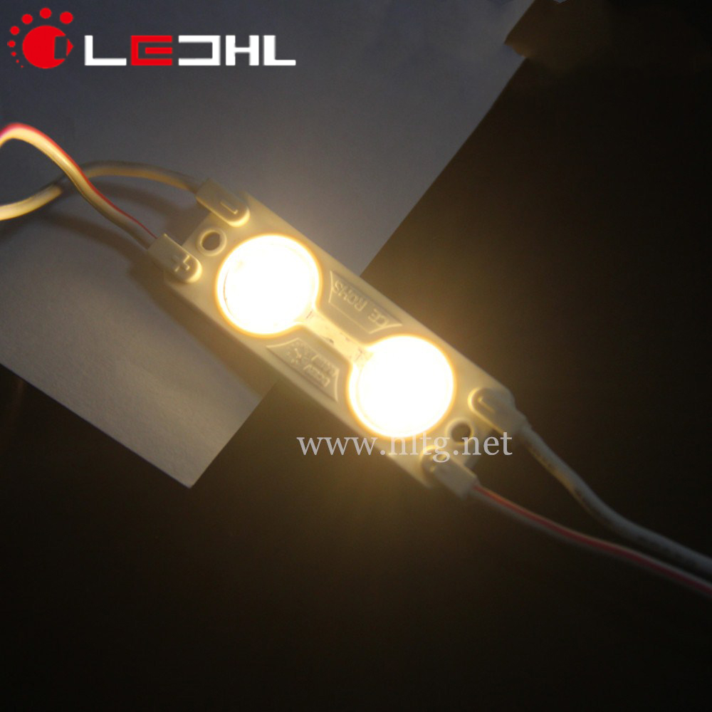 IP65 2 leds 5630 smd Waterproof Led Module with Lens Injection Molded DC12V
