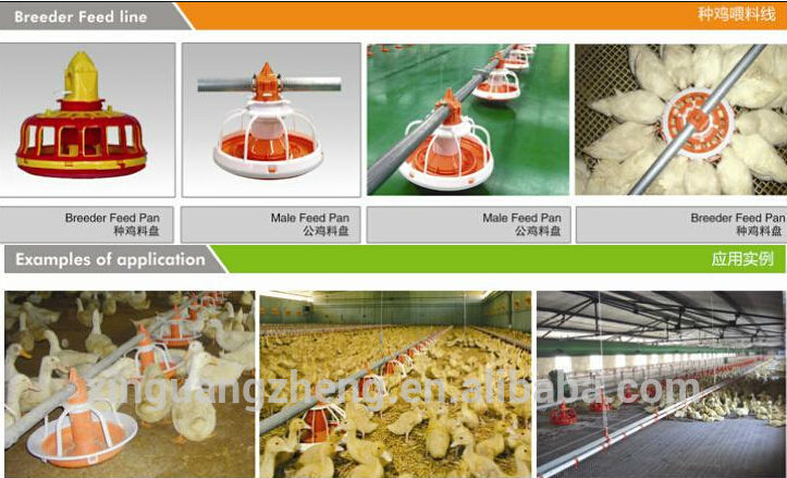 feeding auto equipment flat for chicken houses