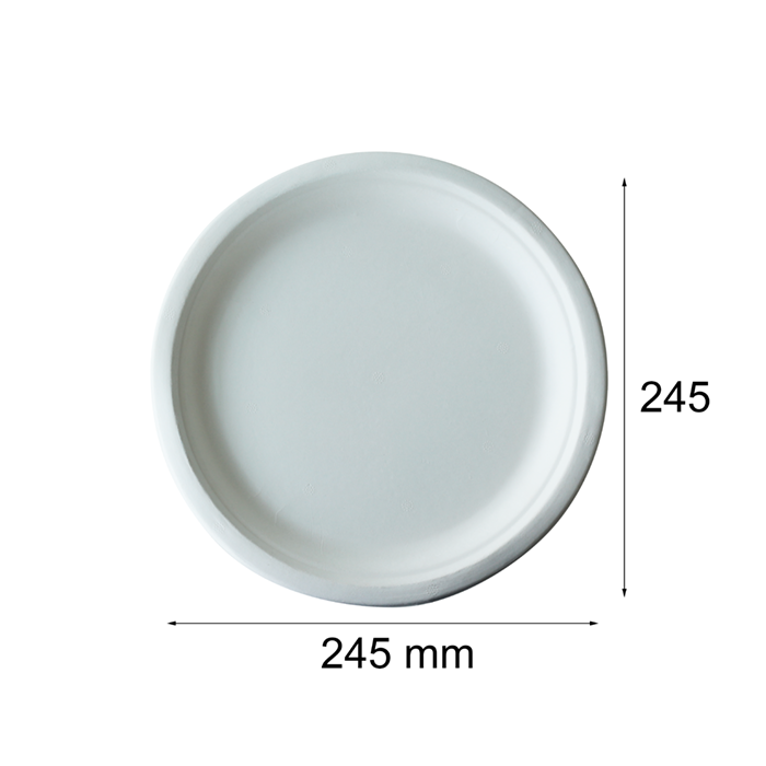 Factory Price 10 Inches Round Paper Plate Custom Dinner Plate With Bio Disposable Plate
