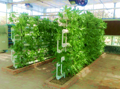 Charmant Hydroponics Growing Equipment In Agriculture