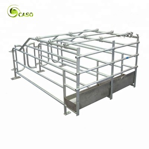 Durable Sow Gestation Farrowing Crate Swine Farm Equipment Pig Nursery Stall