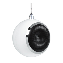 Hot New Products active pa speaker 24 inch 21