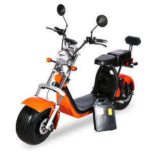 Rooder COC Citycoco Road legal EEC electric scooter China with two removable battery
