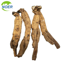 Top Quality Traditional Chinese Edicine Korean Red Ginseng Tonic