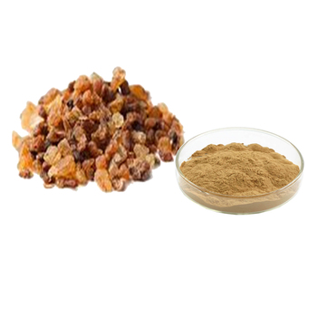 Natural Commiphora Mukul ( Guggul) Extract 2.5%,5%,10% Guggulsterones - Buy  Commiphora Mukul Extract,Guggul Extract,Nepeta Catario Extract Powder  Product on Alibaba.com