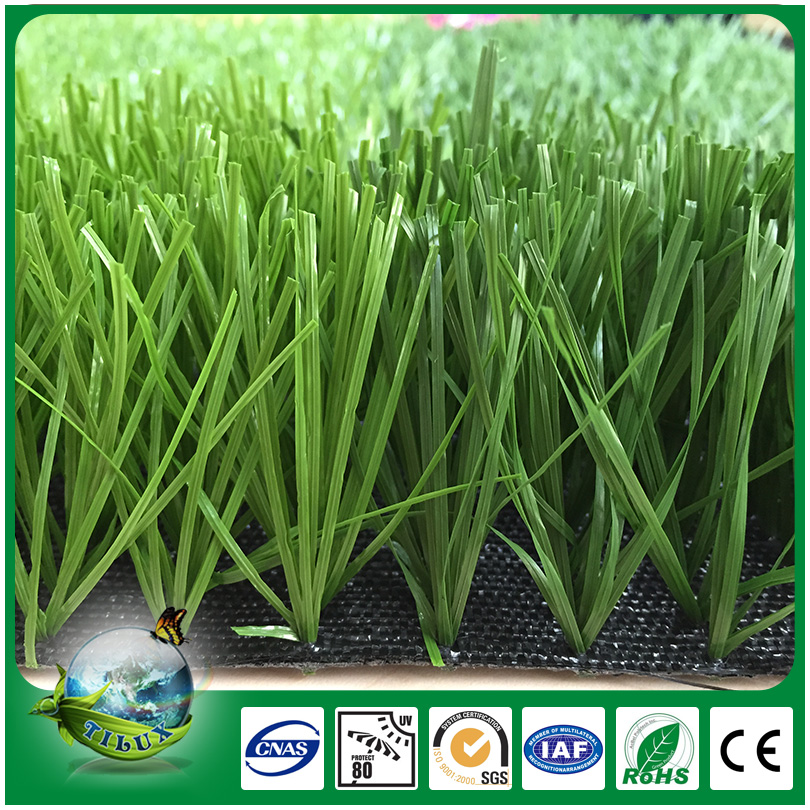 Strong And Beautiful Artificial Grass Types Of Ornamental Plants