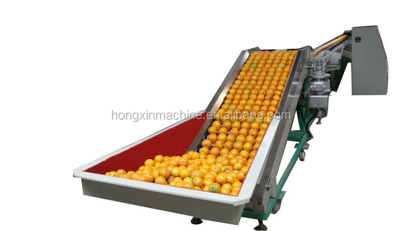 Automatic orange apple and vegetable grader machine from 0086 15238039270