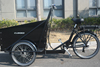 e tricycle for cargo/adult electric bike /clamber 9036E