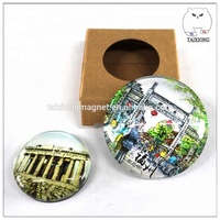 Custom Logo Cute Animal Round Square Heart Shape Crystal Glass Refrigerator Magnet