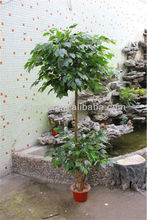 Commercio all'ingrosso artificiale albero di <span class=keywords><strong>banyan</strong></span>/Ficus religiosa/<span class=keywords><strong>banyan</strong></span> tree <span class=keywords><strong>bonsai</strong></span>