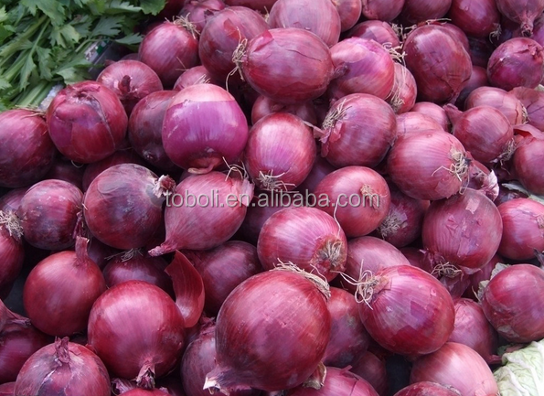 market price for red onion