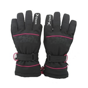 Wholesale BSCI factoryWinter thinsulate insert heating ski gloves
