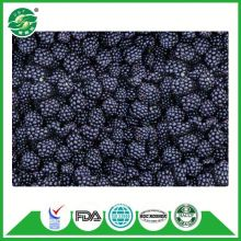 Golden Supplier Delicious China Frozen IQF Blackberry Fruit