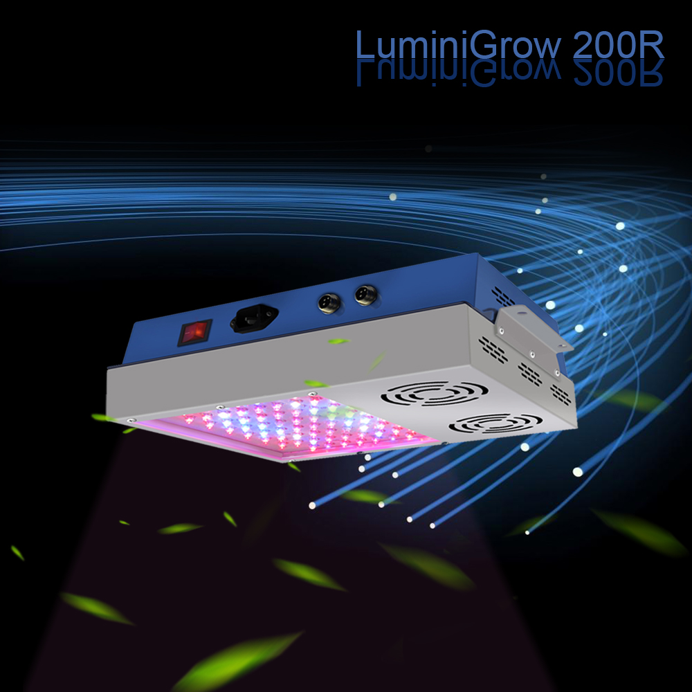 LuminiGrow ETL certified hot sale full spectrum led plant grow lighting 1200w for indoor grow lettuce basil tomato