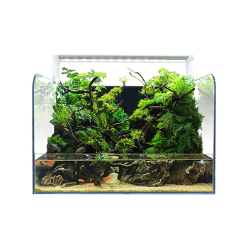 FIREAQUA Factory supply super white glass fashion aquarium fish tank for wholesaler