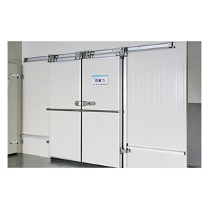 Hot Sale Polyurethane foam sandwich panels cold storage room 1000x2000mm hinge door price