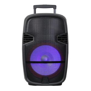 Best Price 10 Inch Active Multimedia Party Indoor Speakers With Rechargeable Battery