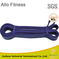 Door Gym Resistance Band,Thera-band Exercise Latex Free Resistance ...