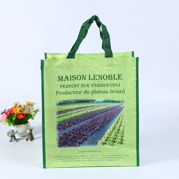 Firm Reusable Laminated PP woven garment eco-bags shopping bags manufacturer