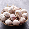 /product-detail/fresh-garlic-natural-garlic-high-quality-fresh-garlic-1118600793.html