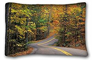 Generic Baby Boys' Nature autumn forest Trees leaves road track hill rotation 20*30 Inch
