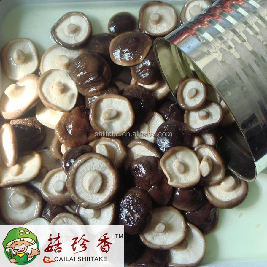 Own factory /export canned shitake mushroom in jar from China