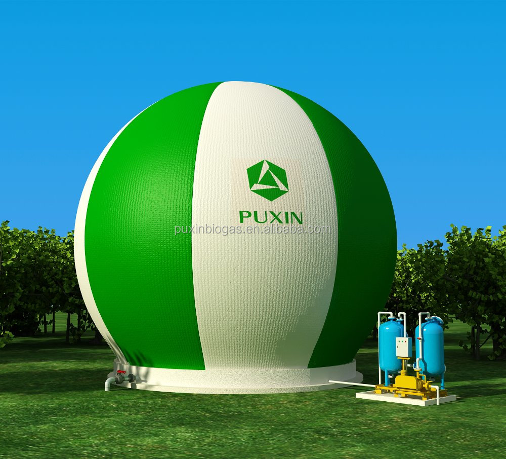 Puxin Bioreactor Biogas Plant Install In Green Houses For ...