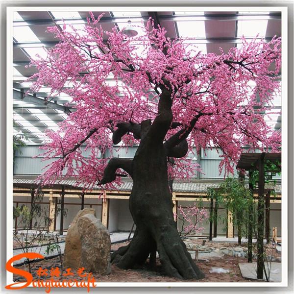china landscape cherry trees - photo #16