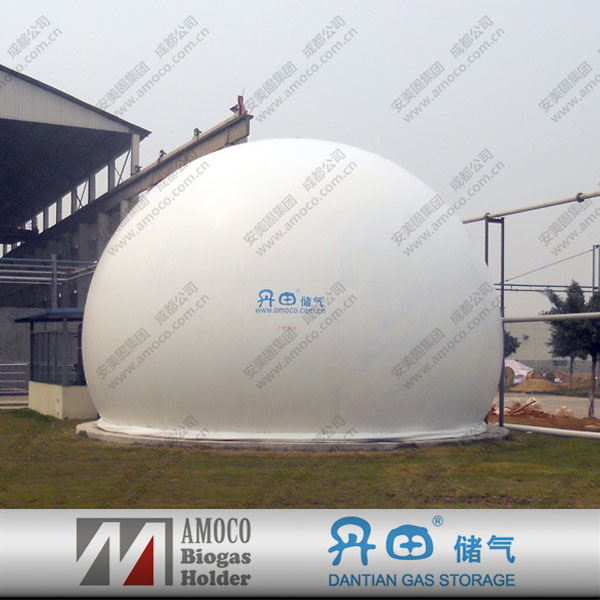 2015 New Teconology Gas Bio, Gas Plant For Fuel Management Systems
