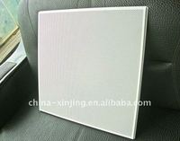 15T/24T metal ceiling panel/lay in perforated ceiling panel 600*600mm,610*610mm (ISO9001,CE)