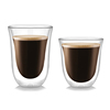 Double Walled Glass Insulated Coffee Tea Beer Cup