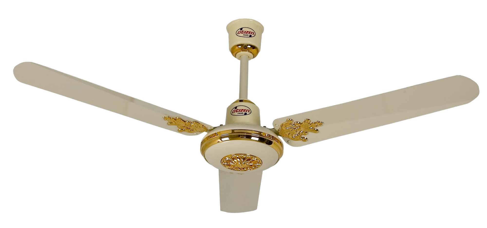 Fancy Ceiling Fan