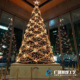 Shopping mall Xmas decor large size Plastic Artificial Christmas tree lighting ornament indoor outdoor