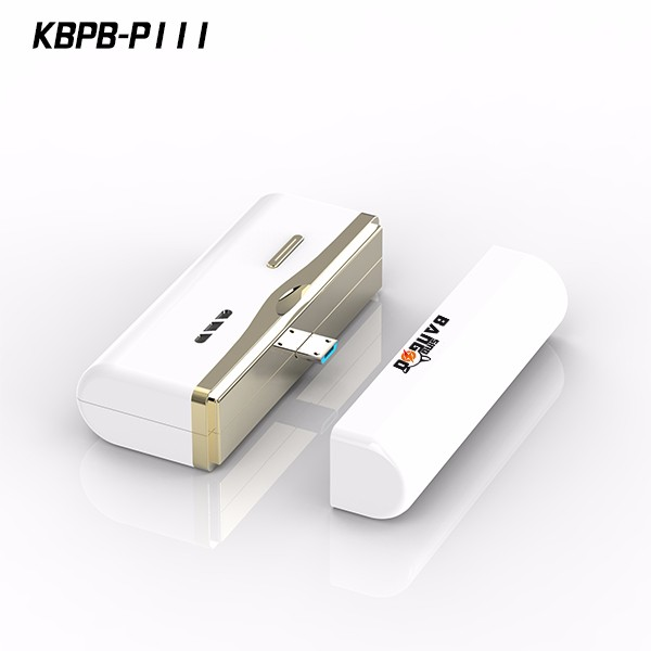 Mobile phone battery 1000mAh for Samsung by kingberry P111