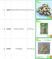 Fat Burner Tablet / Reduce Fat Fast Pills - Buy Reduce Fat Fast ...