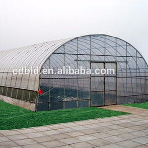 Cheap tunel vegetable greenhouse used for greenhouse vegetable