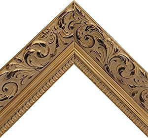 Vintage Ornate Baroque Gold Picture Frame with Espresso Accent On Floral Patterned Motif (16x20 Inch)