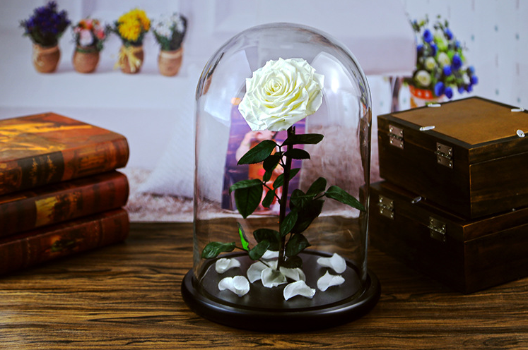 rose-dome-glass