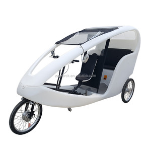 3 Wheel Passenger Touring Electric Assisted Trike Scooter Pedicab, Velo Taxi
