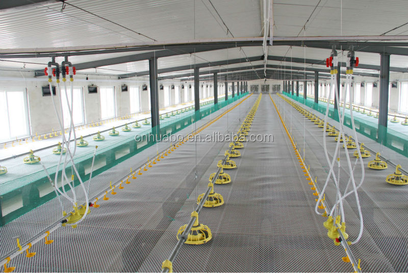 Chicken House Farm huabo complete controlled poultry farm equipment for chicken house