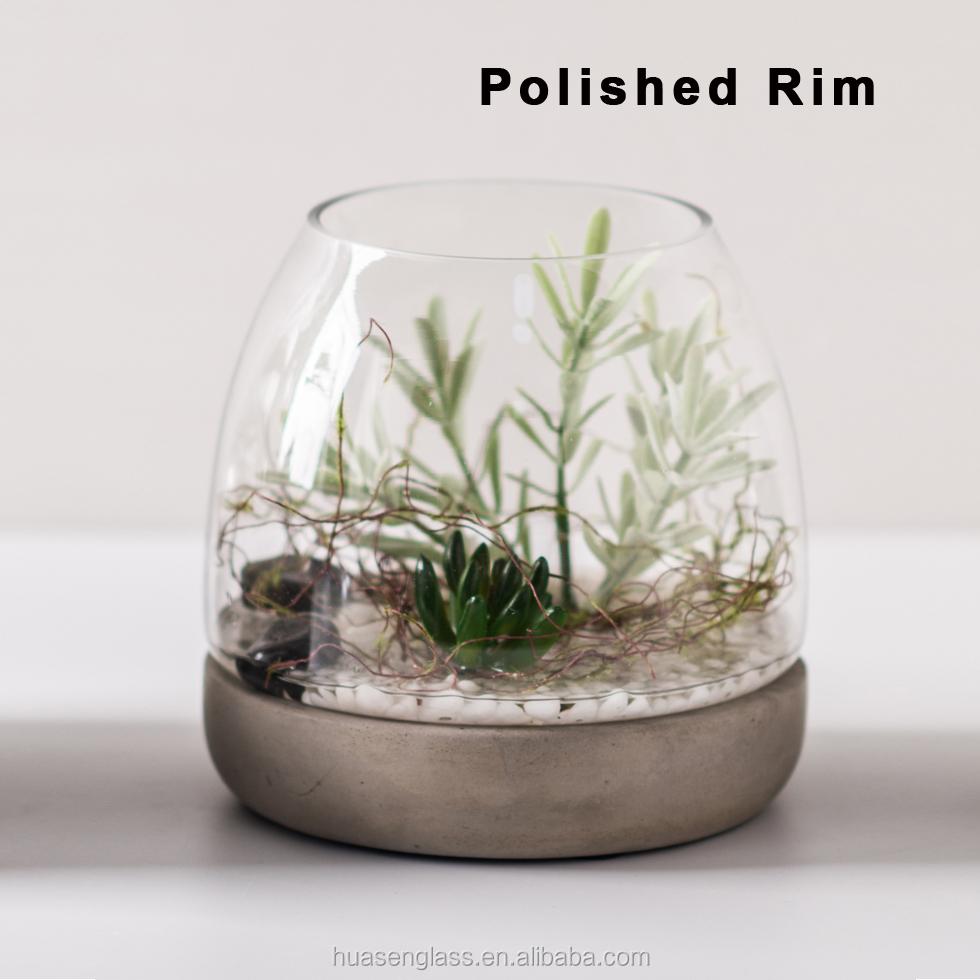 Wholesale Mini Terrarium Glass Air Plant Holder With Cement Base For