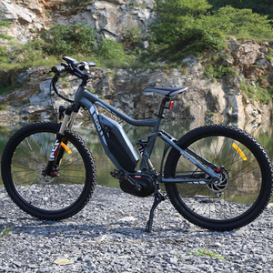 Ebike Full Suspension Mountain bike for Adults with Powerful Mid Motor