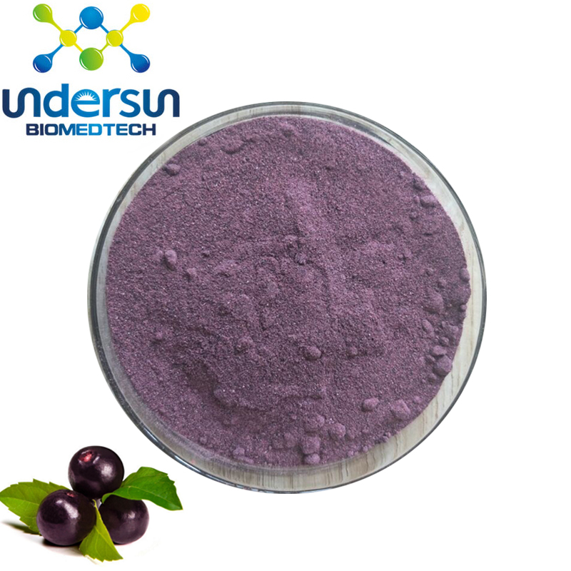 100 Natural Acai Berry Juice Concentrate Powder Brazil Acai Berry